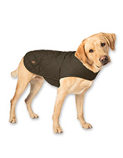 6e64e0d8d9c9 Your dog will appreciate the added warmth of this quilted dog jacket.