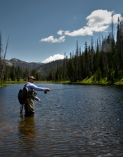 Orvis-Endorsed Fly-Fishing Expedition in Clark, Colorado