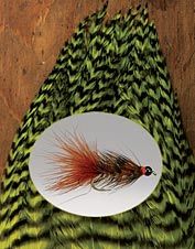 Our Whiting bugger packs will serve you well on the water. Made in USA.