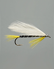 The Black Ghost is a classic streamer fly blending form and function.
