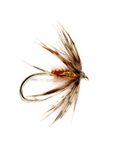 This soft hackle wet fly has attraction and movement due to the addition of sparkle.