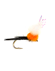 Stock up on your salmon egg flies for the fall when fish are hungry for a big meal.